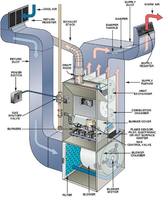 Hot Forced Air Furnace Combustion Chamber Diagram Trusted Wiring